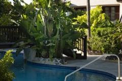 Barbados-claridges-holiday-rental-gibbes-beach-13