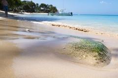Barbados-claridges-holiday-rental-gibbes-beach-38